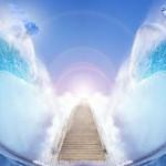 встреча с Ангелами