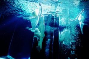 страх воды атлантида
