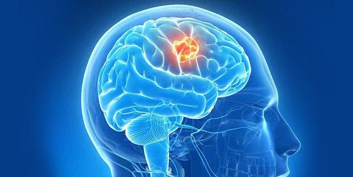 является ли душа частью мозга