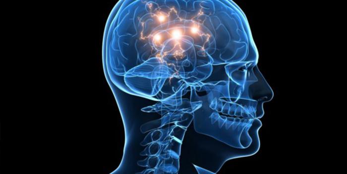 мозг приемник