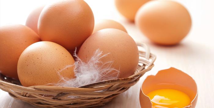 магия куриного яйца