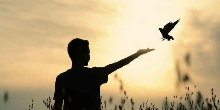 Как делать выбор в согласии со своей душой
