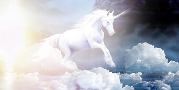Родные, духи, ангелы и животные - наши наставники