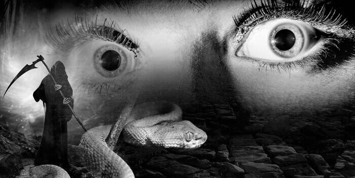 Страх ползущих гадов. Для чего душа планирует ситуации опасности?