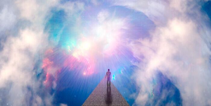 Пробужденная душа: последняя реинкарнация